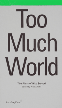 Hito Steyerl: Too Much World