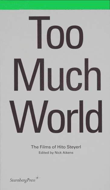 IMA_Steyerl_Too_Much_World